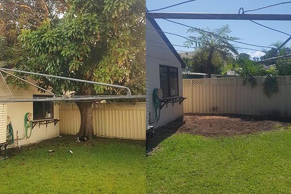 optimum tree service removal nsw central coast (1)